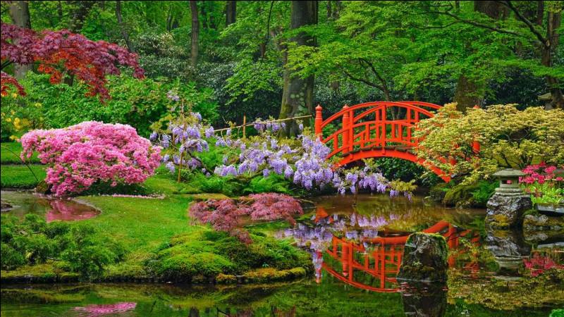 Bienvenue ! Pour commencer, à quoi doit se résumer un jardin japonais ?