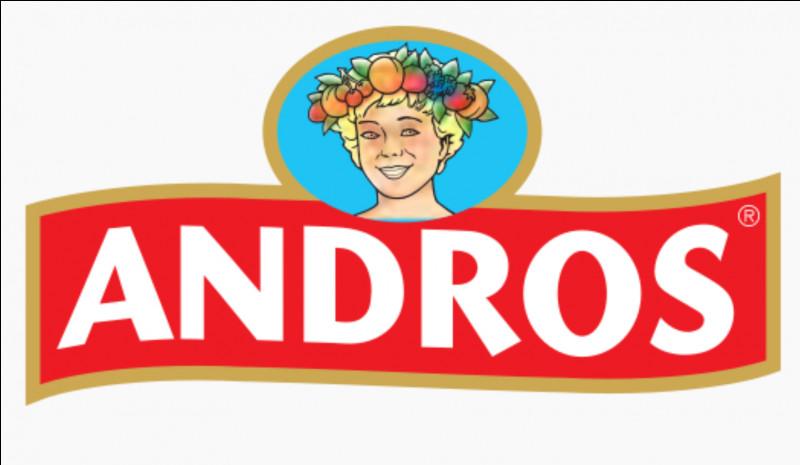 """Quel est le slogan de """"Andros"""" ?"""