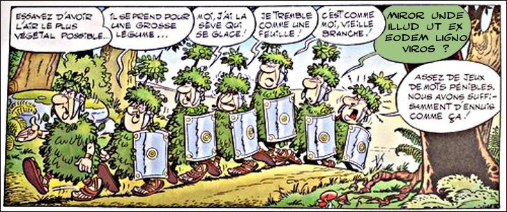 À trop vouloir se mettre au vert, certains légionnaires en viennent à filer la métaphore sylvestre : quelle est la question profonde posée par ce Romain ?