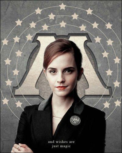 Quel est le métier d'Hermione Granger ?