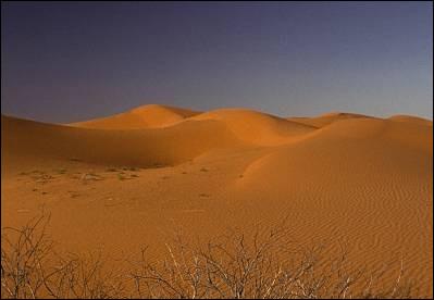 Où se trouve le désert de Tanami (184 000 km²) ?