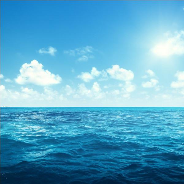 On peut se baigner dans la mer de Lille.