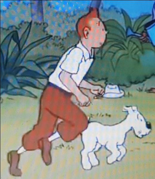 Lorsque Tintin s'échappe dans le jardin on aperçoit deux hommes dont l'un tient quelque chose.Quel est l'objet tenu par l'un d'eux ?