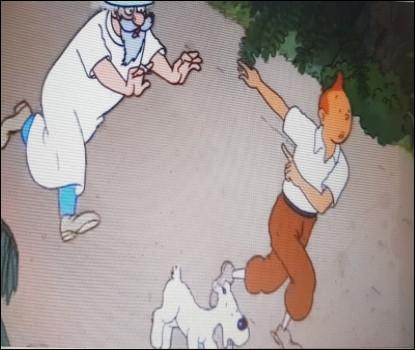 Comment Tintin a-t-il fait pour que l'infirmier à l'entrée le laisse passer ?