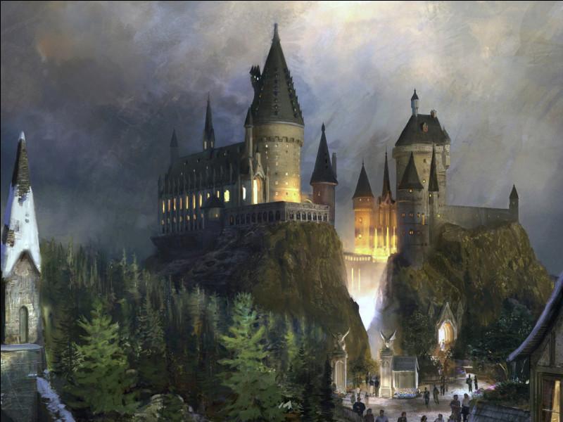 Où rencontre-t-elle Harry Potter et Ron Weasley ?