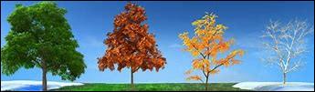 En Grèce antique, il n'y avait que deux saisons.