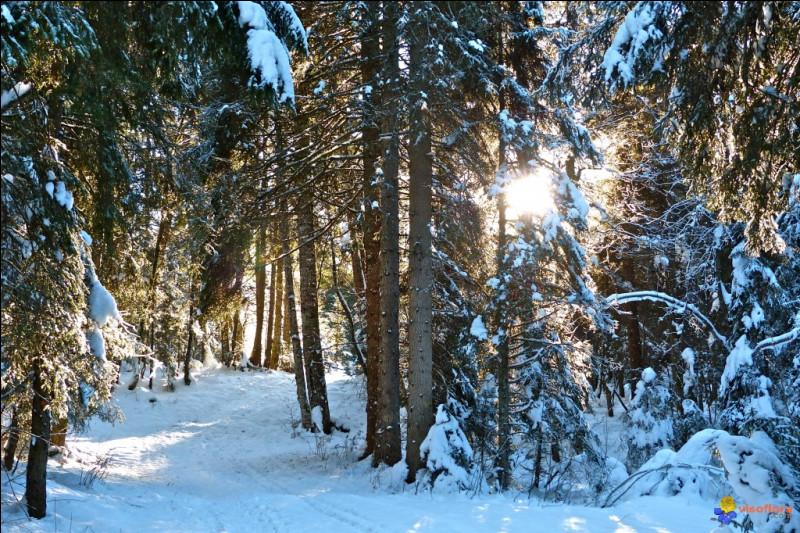 À la fin de ce gros hiver, vous êtes bien heureux de vous y être préparé en été. Cela vous rappelle l'une des fables de La Fontaine :