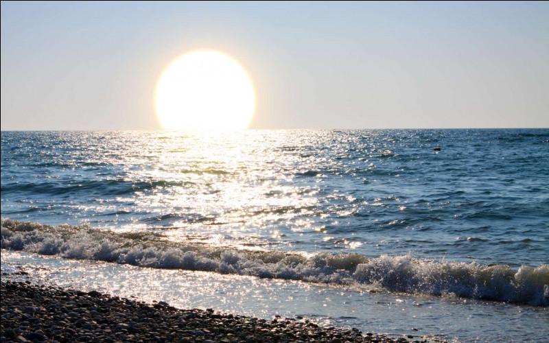 """Vous pensez au proverbe """"L'été arrive, et la vie devient facile"""". Ce n'est pas tout à fait vrai car il fait bien trop chaud ! De qui est ce proverbe ?"""