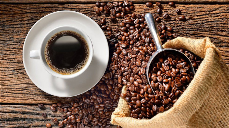 De quelle plante sont issus les grains de café ?