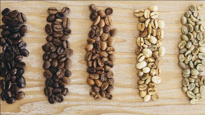 La torréfaction est l'une des étapes les plus importantes dans la fabrication du café. Parmi les trois propositions, laquelle n'est pas un intérêt de la torréfaction ?