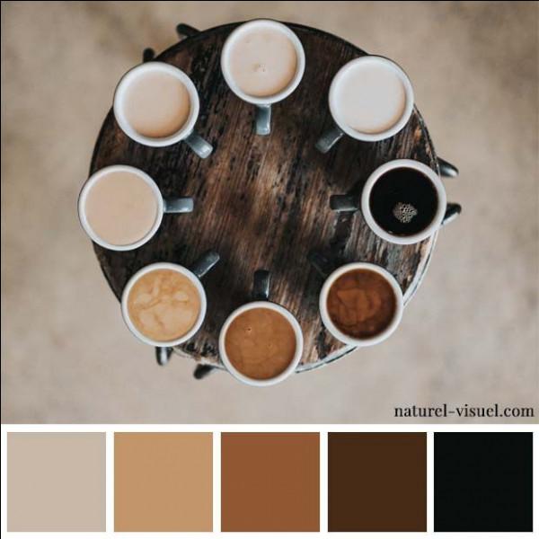 """Qui est l'interprête de la chanson """"couleur café"""" de 1964 ?"""