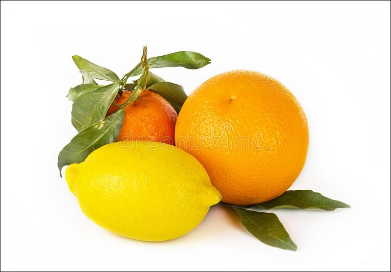 Les produits d'entretien parfumés au citron ou à l'orange peuvent-ils rendrent le chat aggressif ?