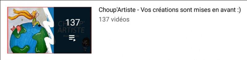 Comment s'appellent les vidéos dédiées aux artistes ?