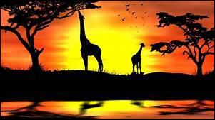 """Un facile car on est bientôt à la fin : comment dit-on """"coucher de soleil"""" ?"""
