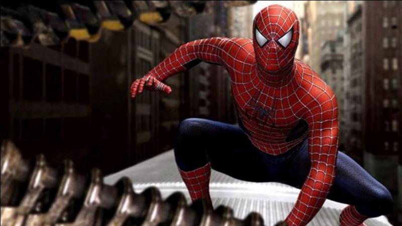 """Dans le film """"Spider-Man"""", qui est la partenaire de Tobey Maguire ?"""