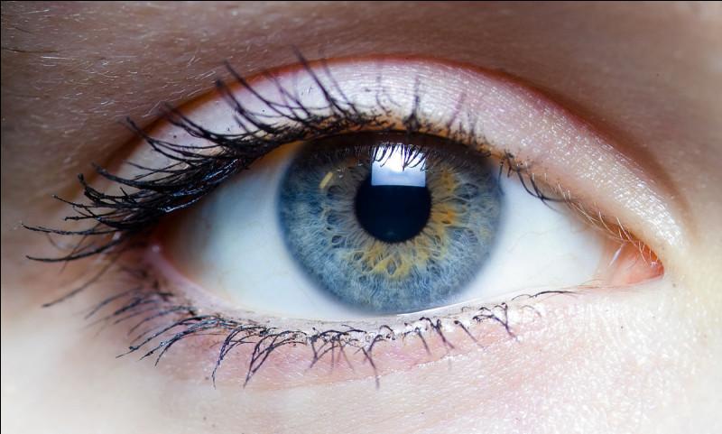 """Au début de """"Fascination"""" Edward a les yeux de quelle couleur ?"""