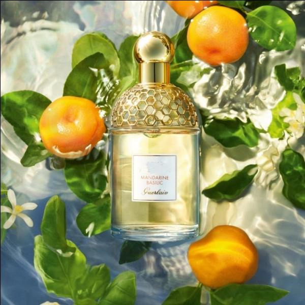 Ce sont la mandarine, le yuzu, bergamote et pamplemousse qui lui donnent ce souffle de fraîcheur !
