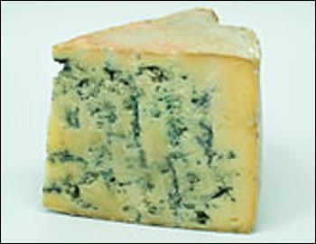 Quel est ce fromage persillé au lait de vache thermisé produit en Suisse dans le canton de Neufchâtel ?