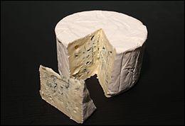 Quel est ce fromage persillé au lait de vache pasteurisé produit en Bresse ?