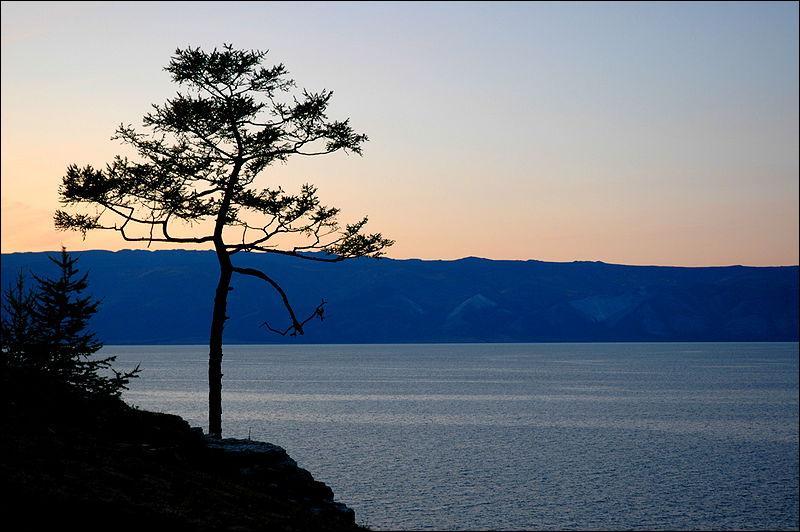 Pourquoi le lac Baïkal est-il célèbre ?
