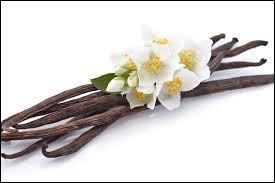 Quel pays avait réussi à dépasser Madagascar pour la production de la vanille ?