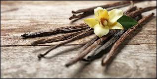 Lequel de ces pays est un grand producteur de vanille ?