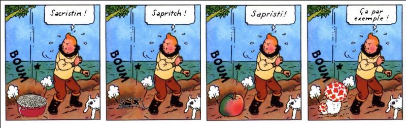 L'avait-il senti venir ? En tout cas, il a bien faillit se le/la prendre dans le pif, le Tintin ! Il s'agissait de quoi, au juste ?
