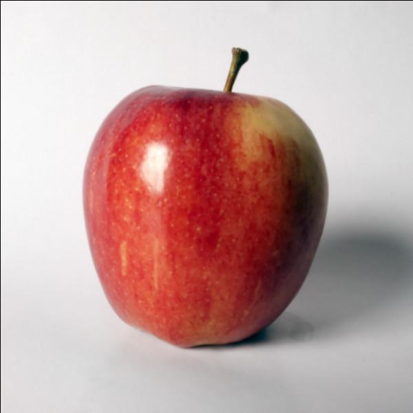 Grâce au cépage chardonnay, ce vin blanc possède un nez fruité : pomme, banane et poire. Quel est son nom ?
