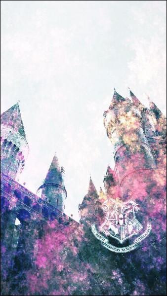Quel objet permet à Dumbledore de revoir ce qu'il a déjà vu ?