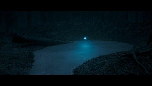 Qui sauve Harry de la noyade dans le lac gelé de la forêt de Dean ?