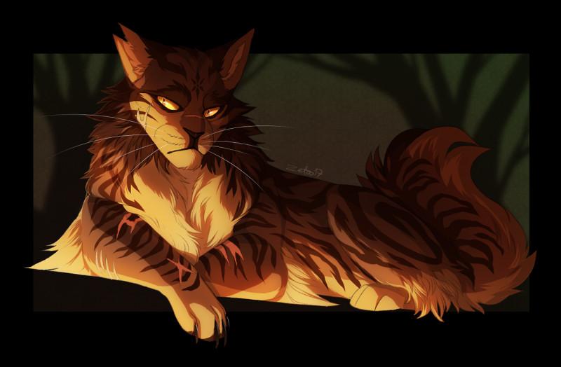 Quelle femelle n'était pas la compagne d'Étoile du Tigre ?