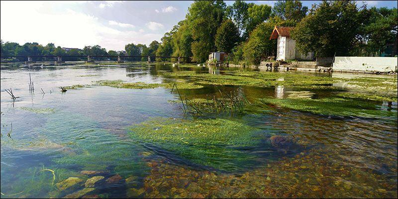 Le nom de Banbridge est cité dans ''Star of the County Down''. Cette ville est jumelée avec Ruelle-sur-Touvre (Charente) qui se trouve près ------------------.