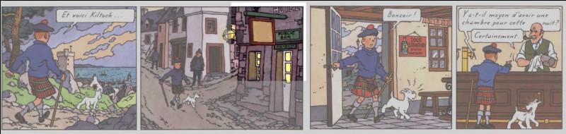 Décidément, Tintin a les moyens ! Il se paye encore l'hôtel, en Écosse, à l'enseigne ... (à la case 2).