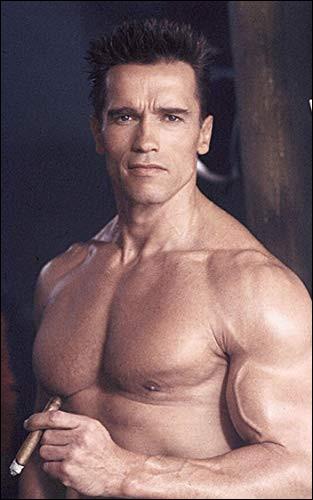 Dans quel genre a-t-on le plus vu Arnold Schwarzenegger ?