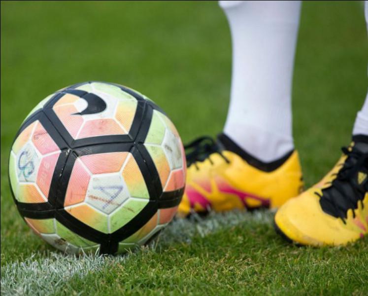 Combien y a-t-il de joueurs professionnels de football ?