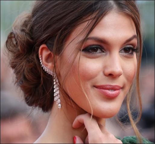 En quelle année Iris Mittenaere a-t-elle été sacrée Miss France ?