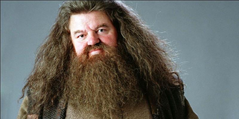 Avec quelle créature Hagrid se déplace-t-il ?