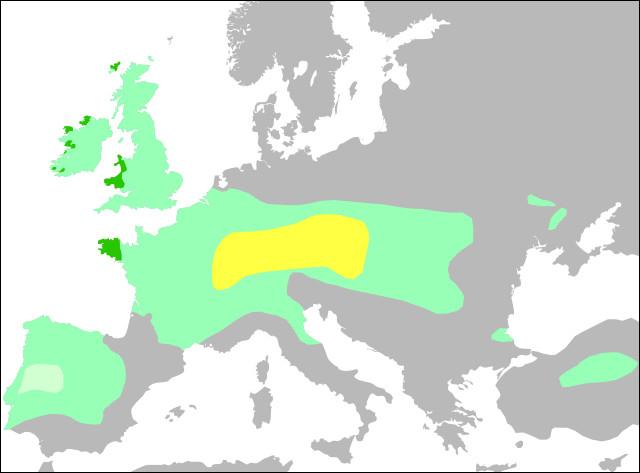 """Second Âge du fer (- Ve s.) > Il n'a pas eu """"d'invasion"""" des [quel peuple ?], puisqu'ils étaient déjà présent en Europe : [quoi ?] s'est diffusée à partir d'un foyer originel."""