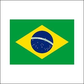 Quel joueur de Ligue 1 n'est pas brésilien ?