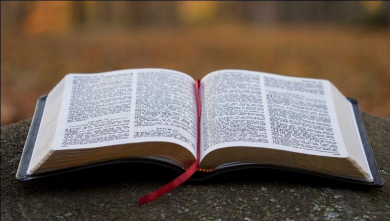 """Qui a été jeté dans une fosse aux lions selon la """"Bible"""" ?"""