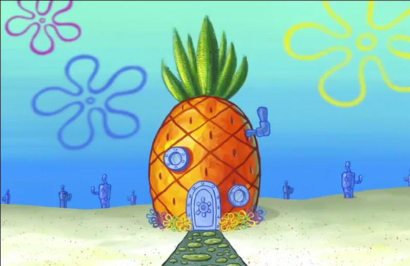 Mais qui habite dans cette maison en forme d'ananas ?