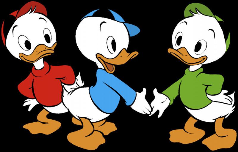 Riri et Loulou sont les neveux de Donald, il manque un neveu, mais qui ?