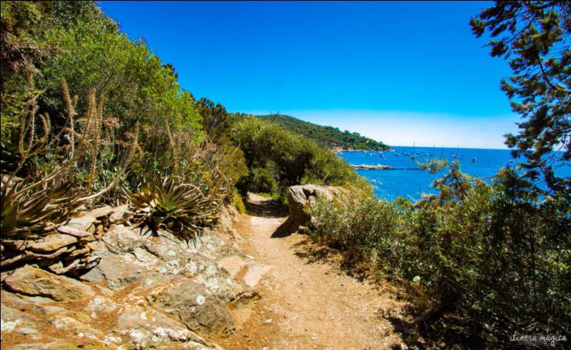 Laquelle de ces îles d'Hyères abrite un domaine naturiste ?