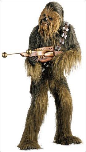 C'est un Wookie, il est le copilote du Faucon Millenium :