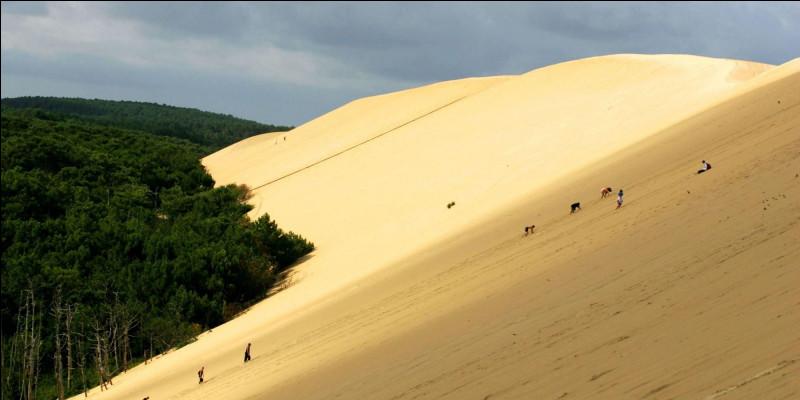 Non, vous n'êtes pas en plein Sahara ! Ne vous donne-t-elle pas envie de faire de la luge dessus ? Haute de 110 mètres, cette dune est bien connue par les Français et d'autres, car c'est une destination... insolite ! Je parle bien sûr de la dune du Pilat ! Seulement, autour de quel bassin se trouve-t-elle ?