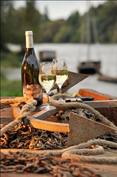 Les vins de l'Orléanais ont obtenu trois Appellations d'Origine Contrôlée, deux en 2006 (Orléans et Orléans-Cléry) et une en 1998. Quelle est cette 3e appellation ?