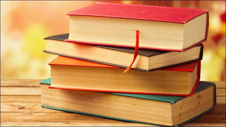 Quel est le livre qui a été le plus vendu en France en 2019/2020 ?