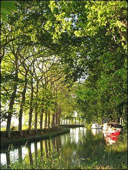 Occitanie - Le Canal du Midi. Vrai ou faux : le Canal du Midi est inscrit au patrimoine mondial de l'UNESCO.
