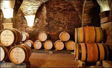 Quelle substance donne au vin son goût rugueux ?