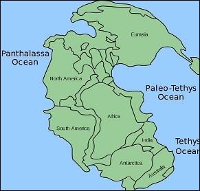 Quel est le nom du supercontinent formé au carbonifère, il y a 290 millions d'années ?